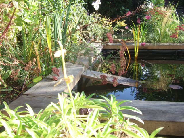 green oak edging to a small pond